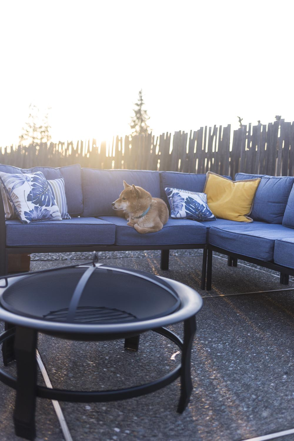 Fine A Backyard Upgrade For Spring With Fred Meyer Hello Rigby Uwap Interior Chair Design Uwaporg